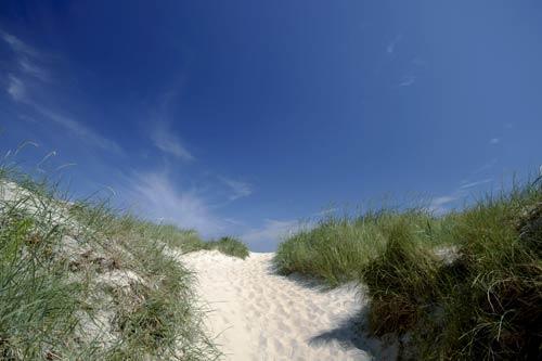 Dünen, Romo, Dänemark