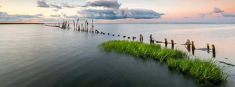 Römö Natur: Wattenmeer, Dünen, Seehunde, Wanderungen, Austernsafari. Romo.